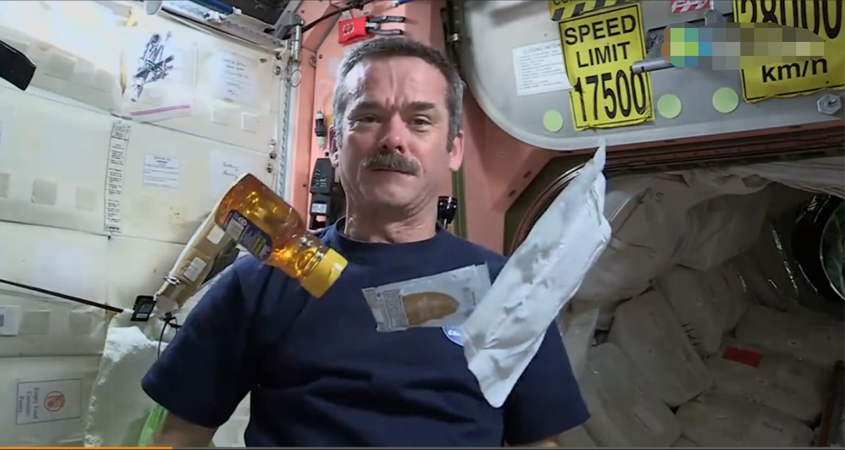 Chris hadfield in the space