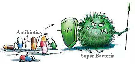 Super Bacteria and Antibiotics
