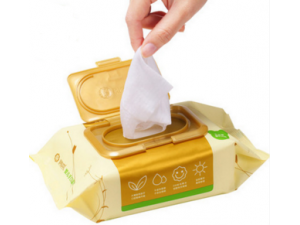 Top Grade Private Label Wholesales for Flushable and Biodegradable Wipes
